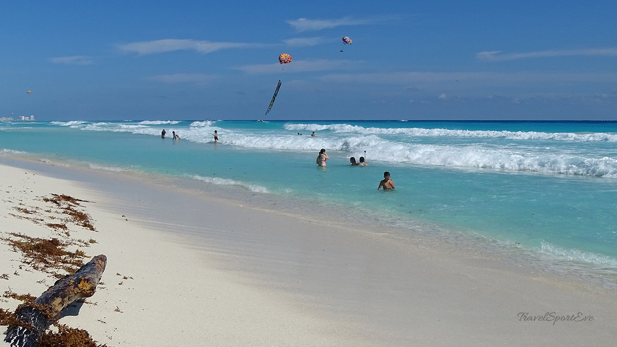 cancun mexiko playa delfines wasser