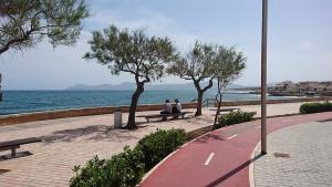 Radfahren-auf-Mallorca-Can-Picafort