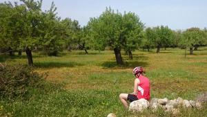 Radfahren-auf-Mallorca-Espenhain