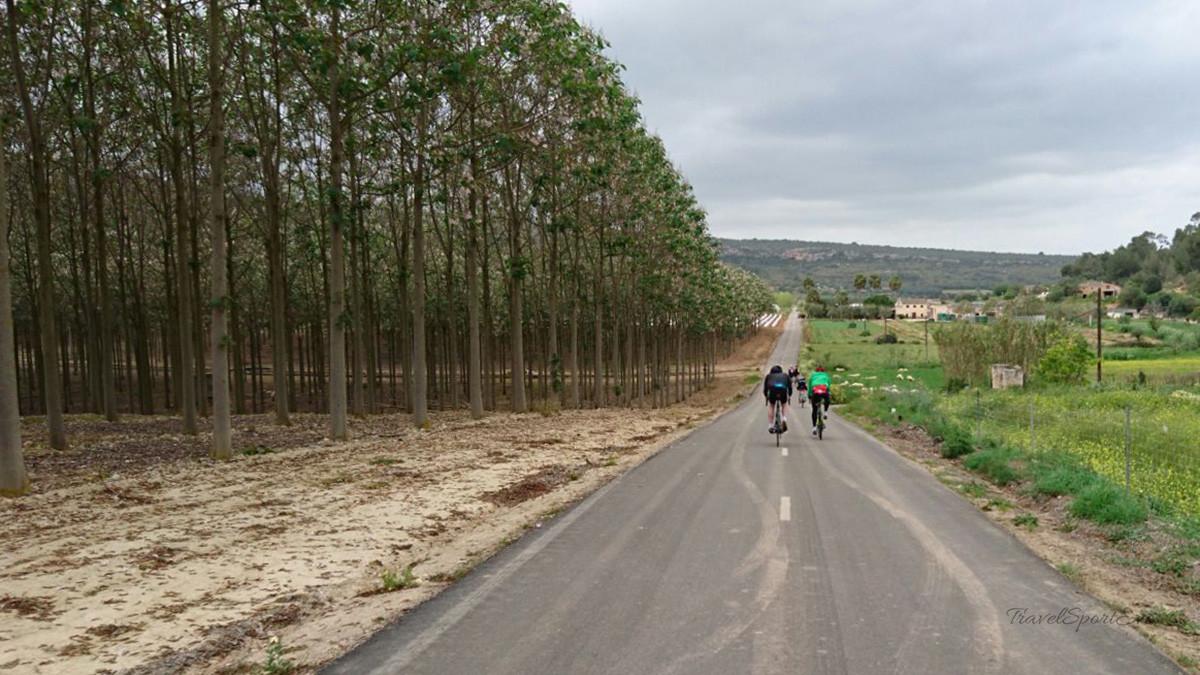 Radfahren auf Mallorca Fahrer