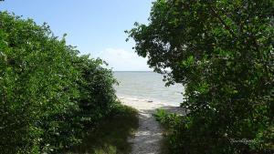 Isla Holbox Ausflüge Inseltour Blick Wasser