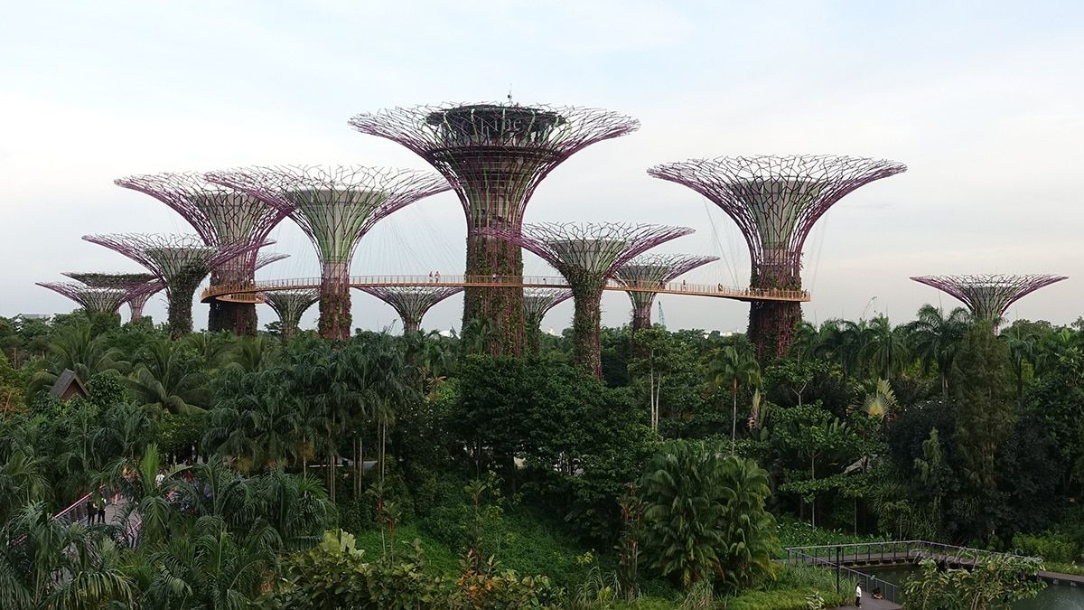 Singapur Reise Gardens by the Bay