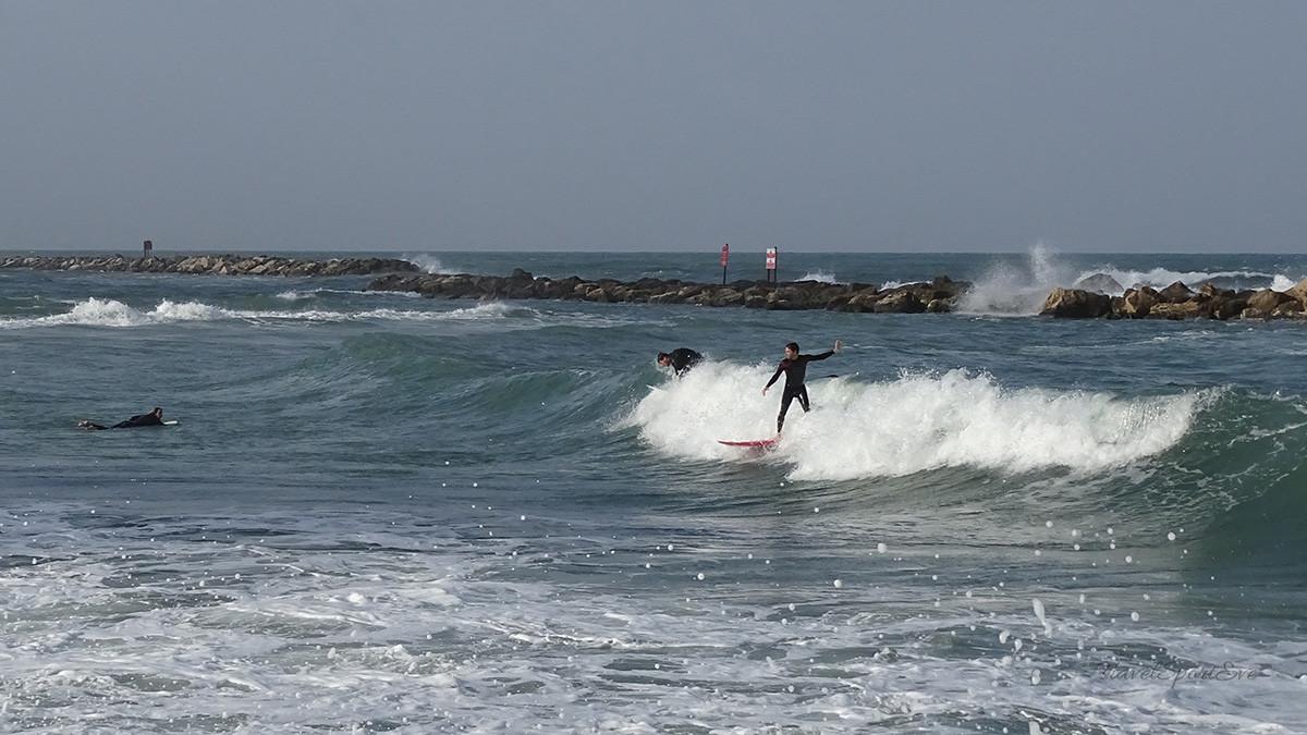 Tel Aviv Marina Surfer