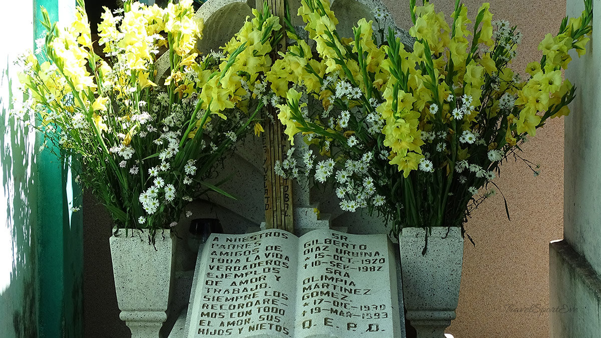 San Cristóbal de las Casas Blumen auf Friedhof
