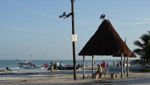 Isla Holbox Strand Mast