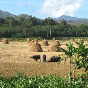 Myanmar Bilder Hsipaw Landschaft