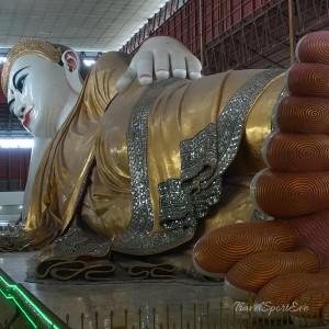 Myanmar Bilder Yangon Buddha Chauk Htat Kyi Pagoda