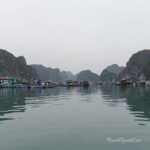 Vietnam Bilder Cat Ba Halong Bucht